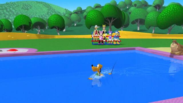 File:Pluto swimming in the pool.jpg