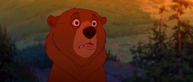 File:Bear 50.jpg