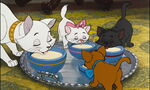 Aristocats disney