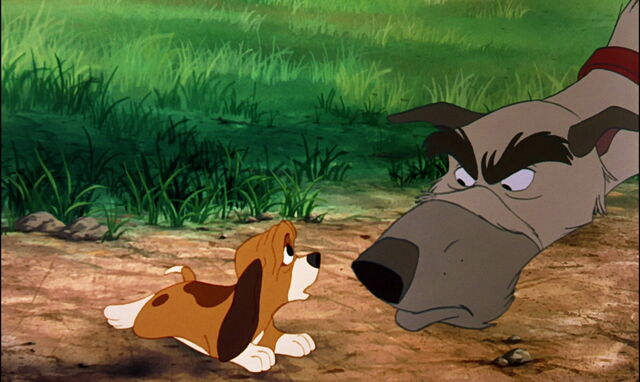 File:Fox-and-the-hound-disneyscreencaps.com-847.jpg