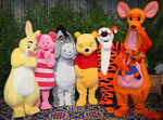Winnie the Pooh and Friends Disney Park