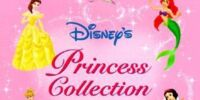 Disney's Princess Storybook Collection: Love and Friendship Stories
