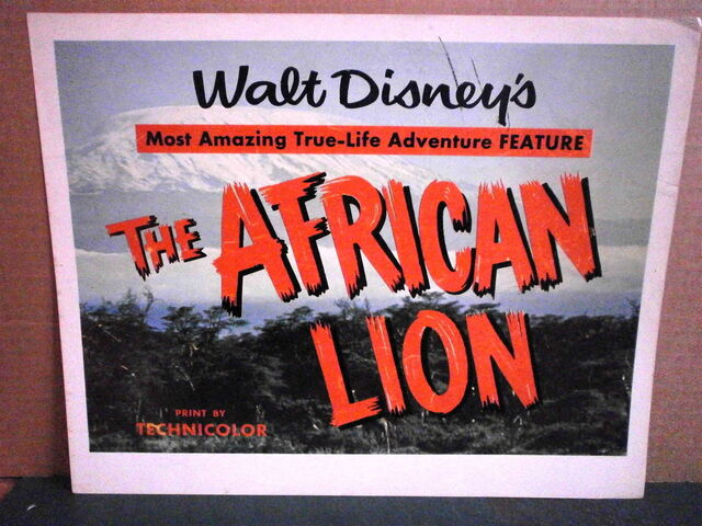 File:The african lion milotte original title lobby card.jpg