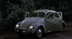 The-Love-Bug-40