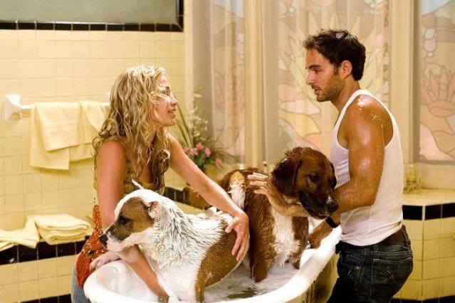 File:Beverly-Hills-Chihuahua-Movie-Ph-4.jpg