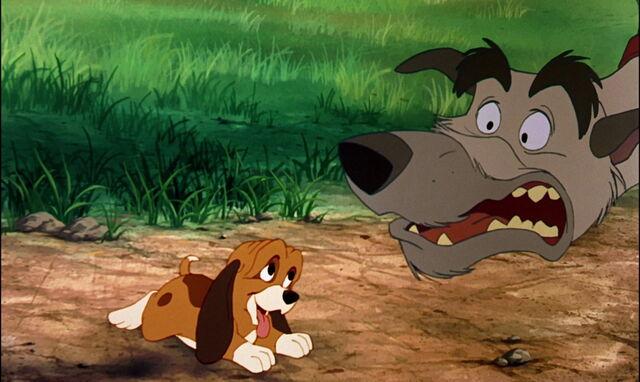 File:Fox-and-the-hound-disneyscreencaps.com-852.jpg