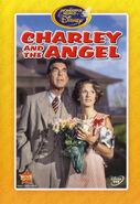 1973-angel-5