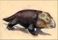 Hyperodapedodon-sketch