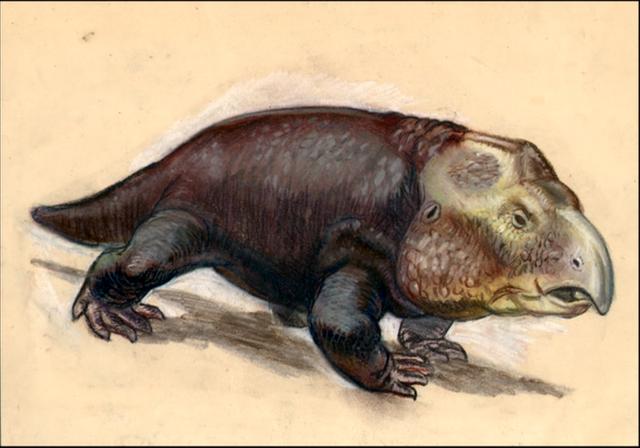 File:Hyperodapedodon-sketch.png