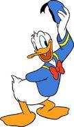 Disneys donald duck-1062