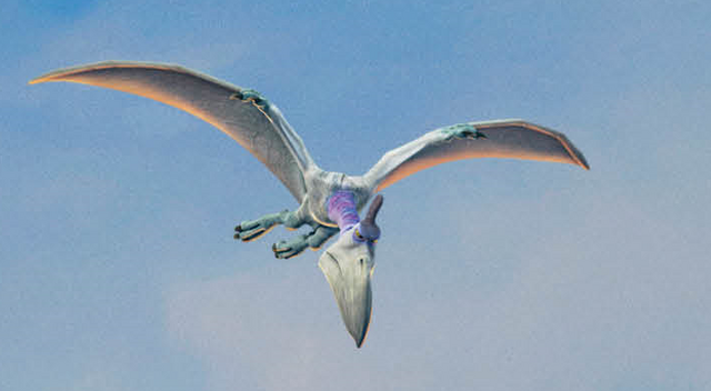 File:Pterodactyl profile.png