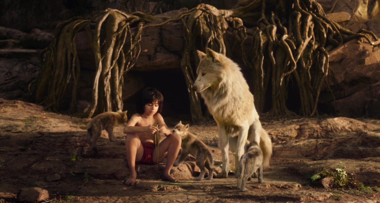 Jungle Book Kid Story