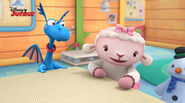 Lambie, stuffy and chilly