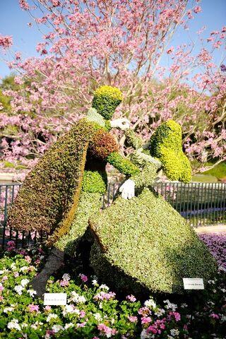 File:Sleeping Beauty Topiary.jpg