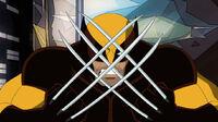 Wolverine12