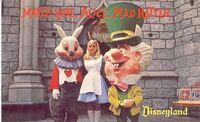 Disneyland postcard d-16 640