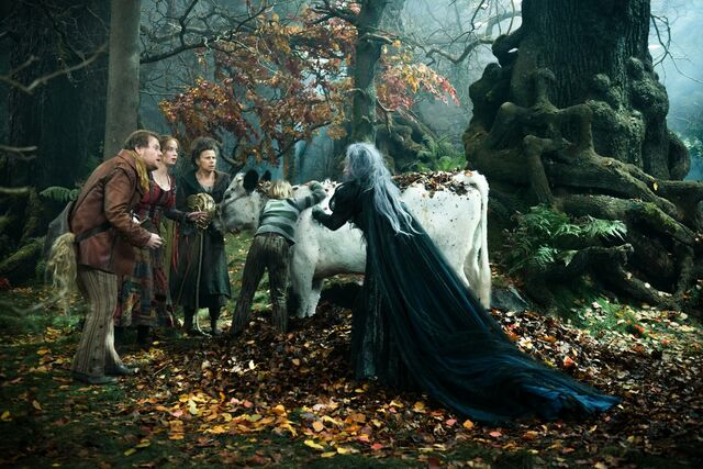 File:Into the Woods Film.jpg
