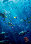 Textless Finding Dory Poster