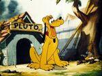 Pluto1wdt