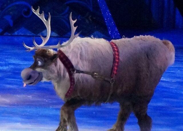 File:Sven Disney on ice .jpg