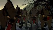 Hyenas-0