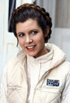 Leia-princess-leia-organa-solo-skywalker-9301324-449-661