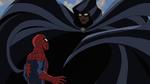 Spider-Man and Cloak USMWW