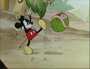 Mickey's Garden-59
