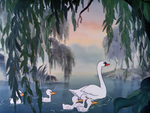 Mother Swan 2
