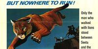 Run, Cougar, Run