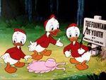 Huey, Dewey and Louie-Don's Fountain Of Youth