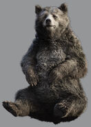 Baloo 1