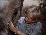 1970-elephant-02
