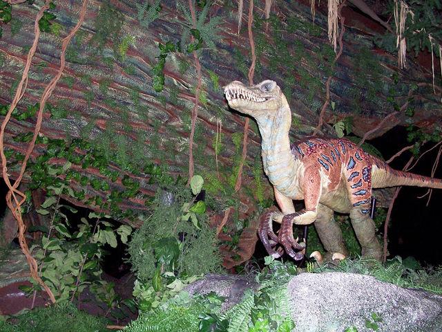 File:Animal Kingdom velociraptor.jpg