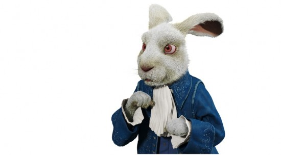 File:Rabbit4-550x304.jpg