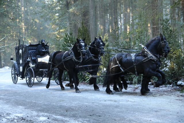 File:Once Upon a Time - 6x14 - Page 23 - Photography - Carriage.jpg