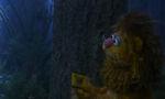 2005-muppetsoz-08