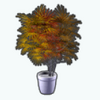AutumnStreetStyleSpin - Japanese Maple