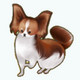 Pets - Dog Pierre