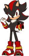Sonic Boom Shadow