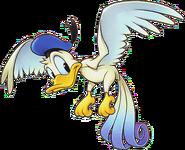 Donald Bird