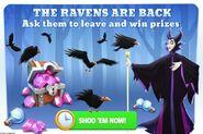 Ravens are back