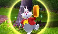 DMW - White Rabbit