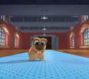 Pot O Pugs