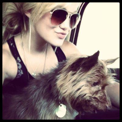 File:Olivia cat.jpg