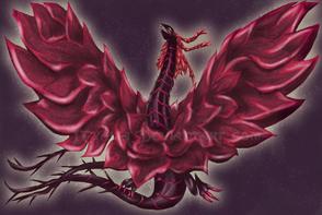 B.R.Dragon