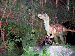 Animal Kingdom velociraptor