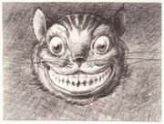 Cheshire Cat David Hall