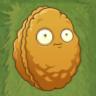 File:Wallnut.png