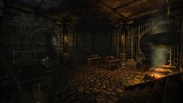 Circle of Trust Inn interior basement (D2 FoV location)